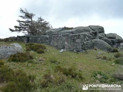 La Peñota y Peña del Arcipreste;excursiones de senderismo;grupos de montaña madrid